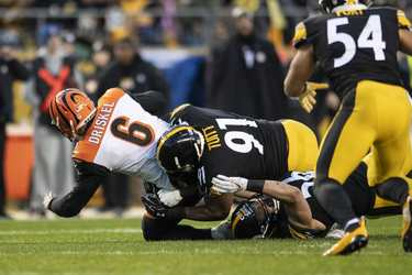 Stephon Tuitt, Anthony Chickllo, Jeff Driskel, Steelers vs Bengals